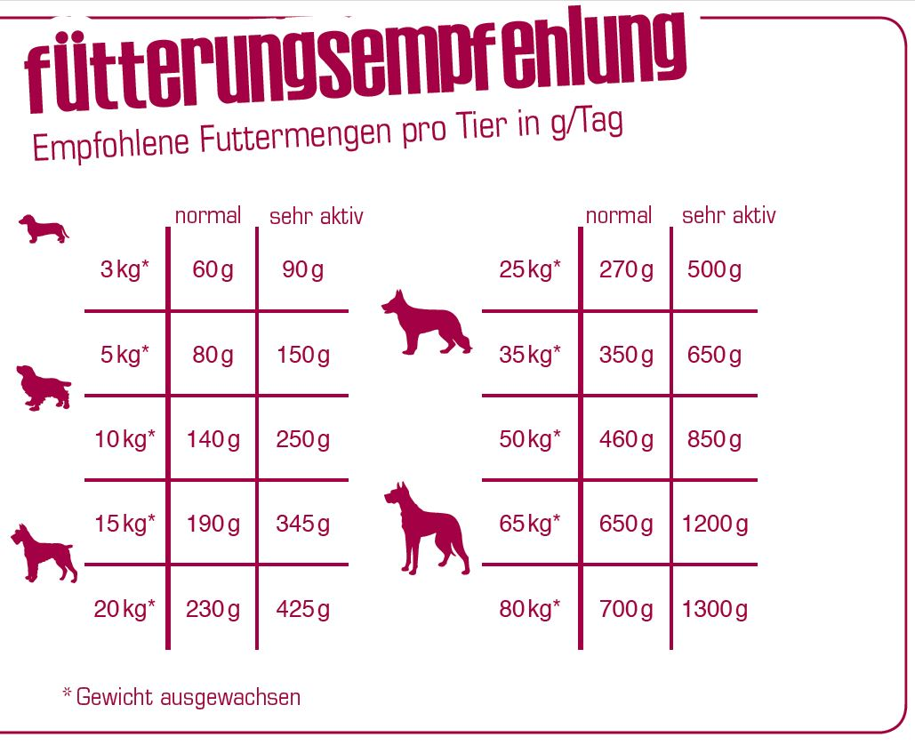 Fuetterungsempfehlung_Bewi-Dog-H-Energy