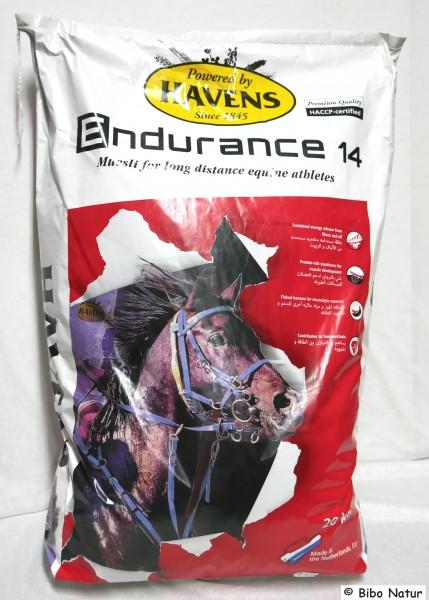 Endurance 14