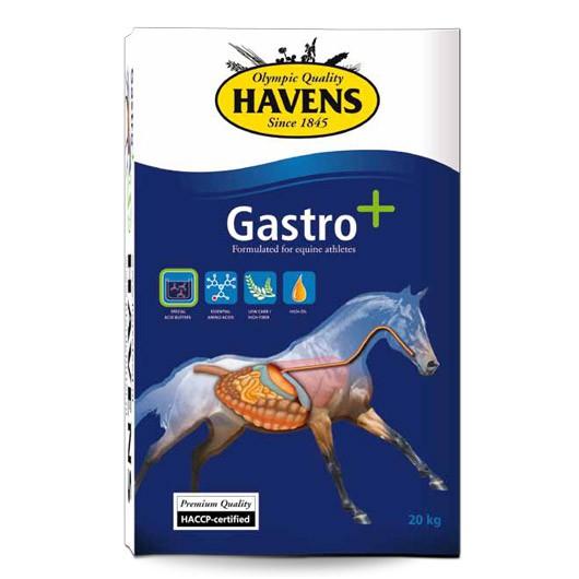 Havens Gastro+