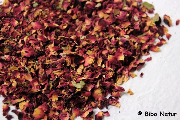 Rosenblütenblätter lose
