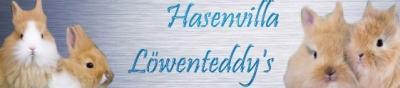 Loewenteddys