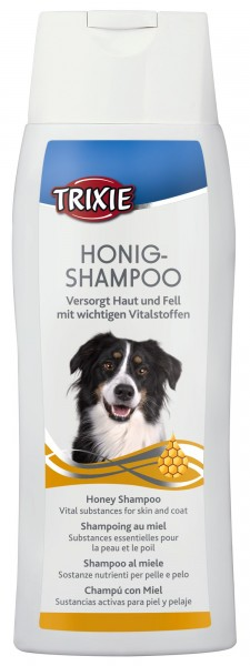 Honig-Shampoo