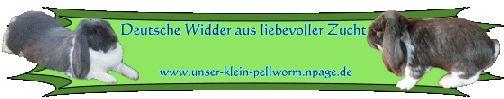 unser-klein-pellworm